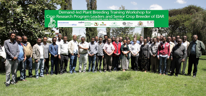 Professor Participates in Plant Breeding Guide International Launch